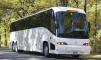 COACHES & BUSES